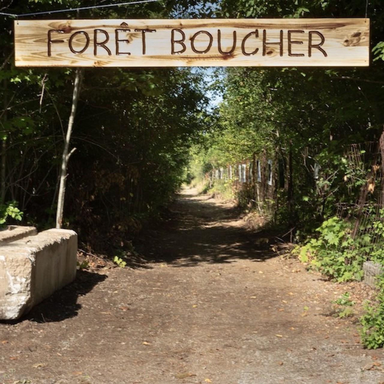 Fondation forêt Boucher – Création du parc de la Forêt-Boucher
